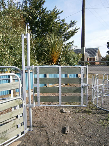 Lift and Swing Sheep Gates