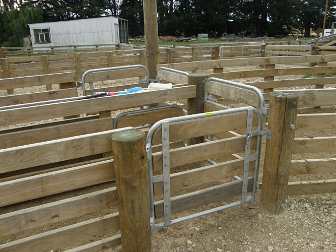 Sheep Yard Frame